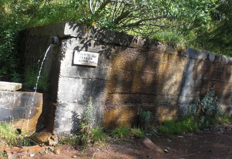 Fuente Del Cerezo