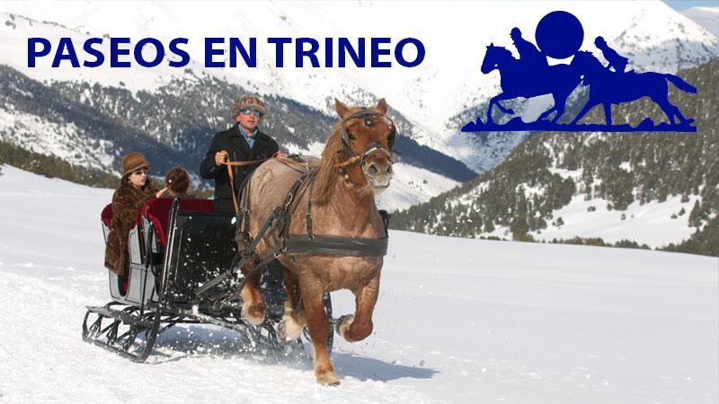Paseos En Trineo De Caballos, Val D'Aran,