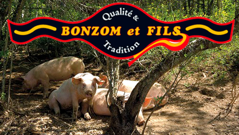 Bonzom-et-Fils-Saillagouse-La-Cerdanya-Pyrenees