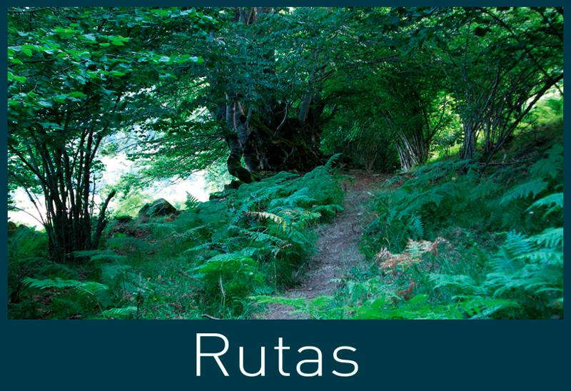 Rutas, hiking, val d'aran, Pyrenees