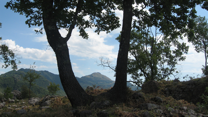 Puig De Les Bruixes I Comanegra