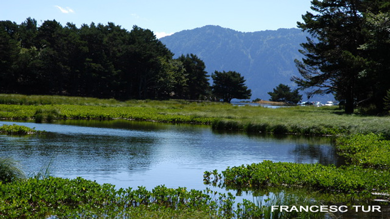 Bassa D'Oles, Val D'Aran, Hiking Pyrenees